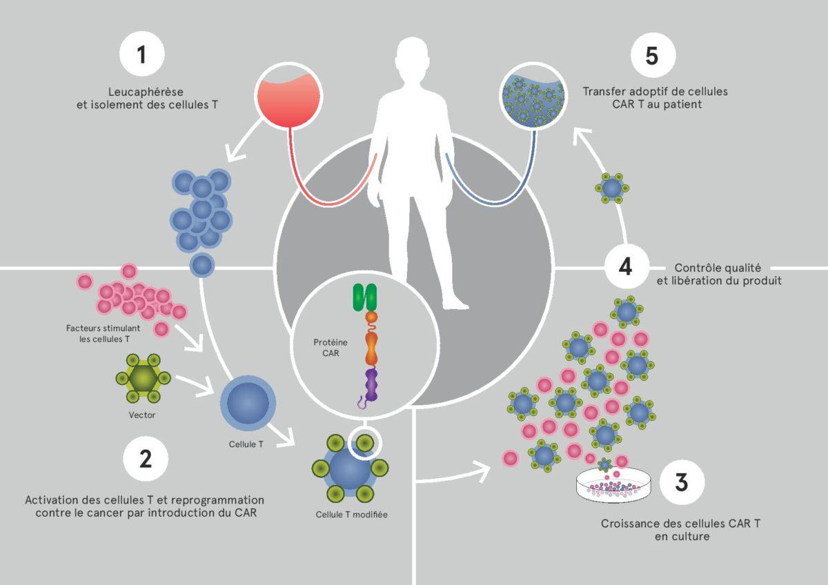 immunothérapie cancer enfant suisse shema